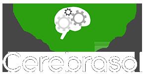 CerebraSol Ltd